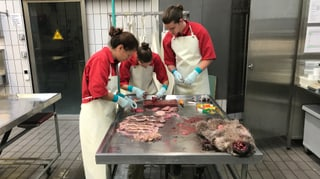 Patologia Berna: Nua che luf ed urs s'inscuntran