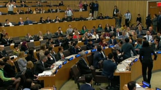 Eklat an UNO-Sitzung: Nordkoreaner sorgen für Tumulte
