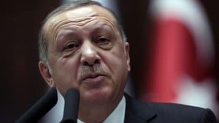 «Erdogan reitet auf einer Popularitätswelle»