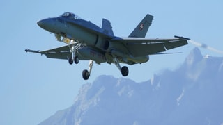 Tiger und F/A-18 fliegen länger als geplant