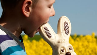 8 Dinge, die sie über den Osterhasen wissen müssen
