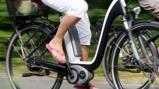 E-Bikes: Dürfen Hund und Kind mitfahren? (Artikel enthält Audio)