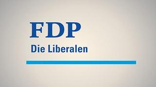 FDP: Geglückter Imagewechsel