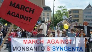 Hunderte bei Protesten gegen Monsanto und Syngenta