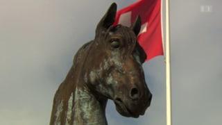 Auf Hufen für die Schweiz: Vom Armeediener zum Freizeittier (Artikel enthält Video)