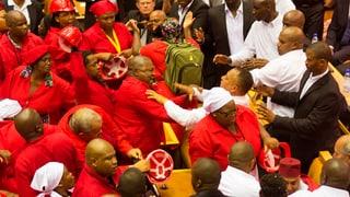 Schreie und Schläge im Parlament Südafrikas