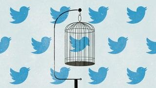 «Wir sollten Facebook und Twitter aus unserem Leben entfernen!»