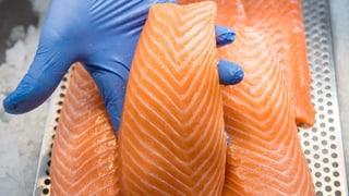 Lachs von Coop, Migros und Volg wegen Listerien zurückgerufen