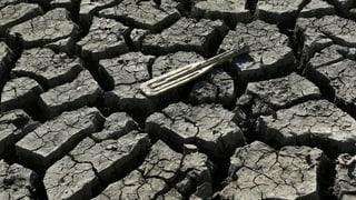 «Der Klimawandel ist kein Scherz»