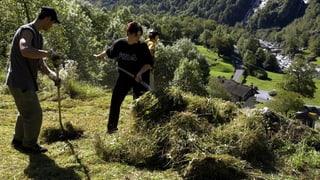 Mehrere Millionen arbeiten in der Schweiz umsonst – jeden Tag