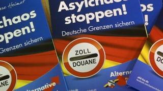 Alternative für Deutschland: Sechs Fakten zur Protestpartei