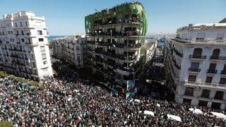 Wieder Massenproteste gegen Präsident Bouteflika