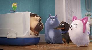 Filmtipp: «Pets 2»