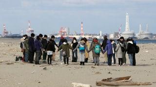 Catastrofa da Fukushima fiss stada evitabla