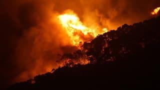 Buschfeuer verwüsten Touristen-Gebiet in Australien