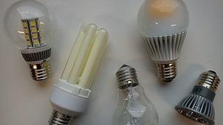 Verschiedene Energiesparlampen liegen auf einer weissen Platte