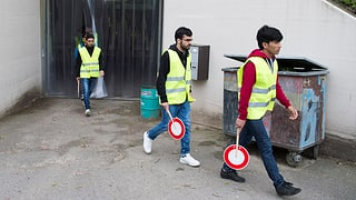 Flüchtlinge sollen schneller arbeiten dürfen – bloss welche?