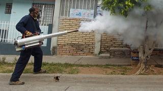 Zika-Virus: WHO erklärt globalen Notstand