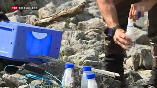 PCB: WWF beneventa ulteriuras examinaziuns