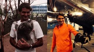 Roger Federer ist tierisch verknallt