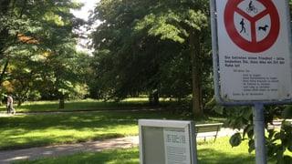 Picknicken auf Zürcher Friedhöfen