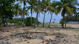 Video ««Buffer Zone» – Sri Lanka zehn Jahre nach dem Tsunami» abspielen