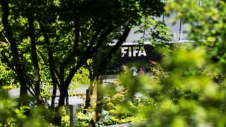 Die Fifa als «Reputationsrisiko» für Zürich?