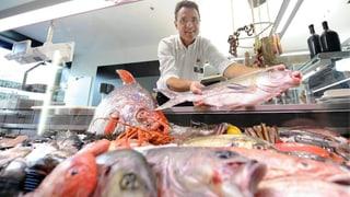 Umfrage: Was ist Ihnen beim Fischkauf wichtig?