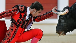 Weltkulturerbe: Spanien will den Stierkampf schützen und fördern