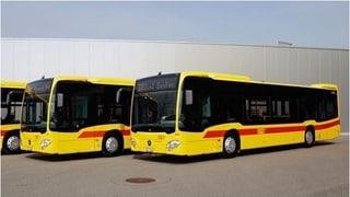 Eine neue Ausschreibung aller Buslinien macht wenig Sinn