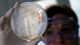 Kampf gegen Antibiotika-Resistenzen