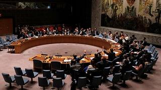 Syrien: Der UNO-Sicherheitsrat «bedauert»