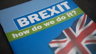 «Der Brexit ist keine Chance für die Schweiz – im Gegenteil»