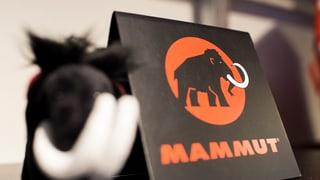 Mammut Seon verkauft die Seilproduktion nach Österreich