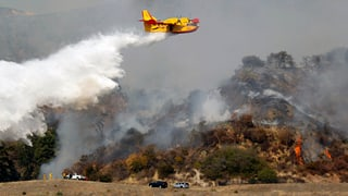 Waldbrände wüten in Australien und Kalifornien