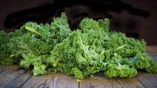 5 Ernährungstrends von Paleo bis Superfood