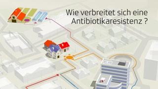 So verbreiten sich resistente Bakterien