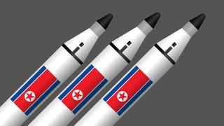 Das mutmassliche Arsenal von Kim Jong Uns Regime in der Infografik.