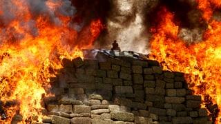 Mexiko fackelt tonnenweise Drogen ab