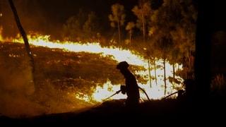 Allein Portugal meldet im August 268 neue Brände an einem Tag
