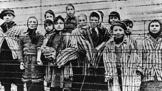 Polnischer Senat stimmt für Holocaust-Gesetz
