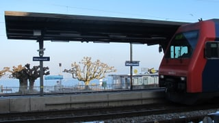 Wädenswil: der Kanton Zürich im Kleinformat