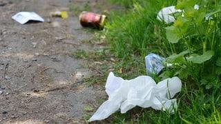 «Abfallsünder sollte man hart abstrafen» (Artikel enthält Audio)