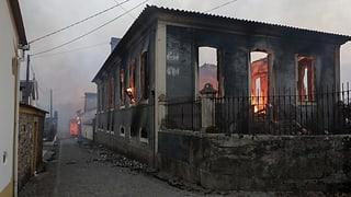 Extreme Dürre und vermutlich Brandstiftung: Auf der iberischen Halbinsel sind bei Waldbränden mindestens 36 Menschen ums Leben gekommen.