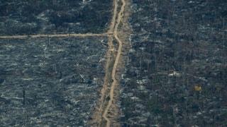 Brasilien verbietet Feuerlegen während der Trockenzeit