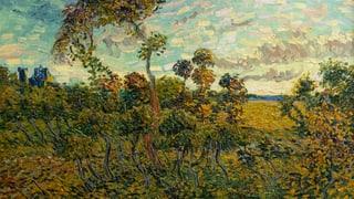«Fälschung» entpuppt sich als echter Van Gogh