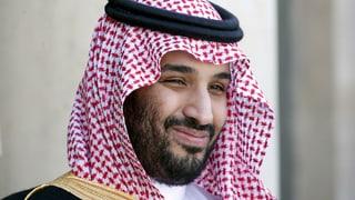 «Was der Prinz plant, ist eine moderne Diktatur»