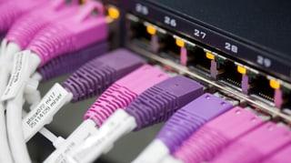 Datenschutz und Netzpolitik