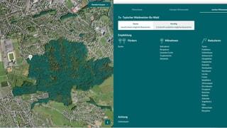 Eine neue App hilft Förstern die passenden Bäume zu pflanzen