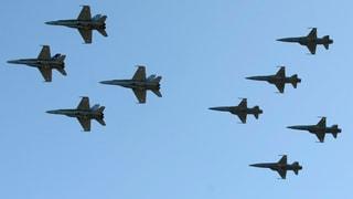 Bundesrat will neue Kampfjets